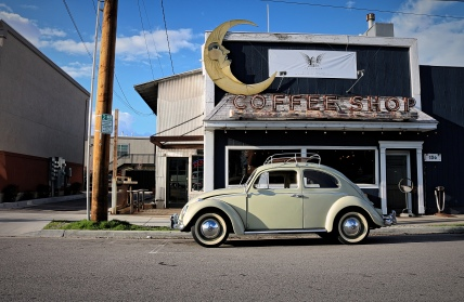 beetle coffee shop