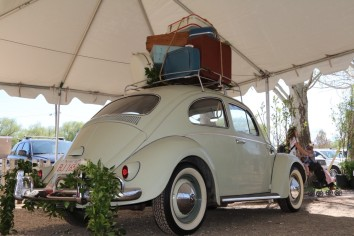 beetle-at-vmd